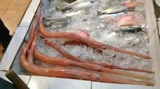 Fish-DaNang1.jpg